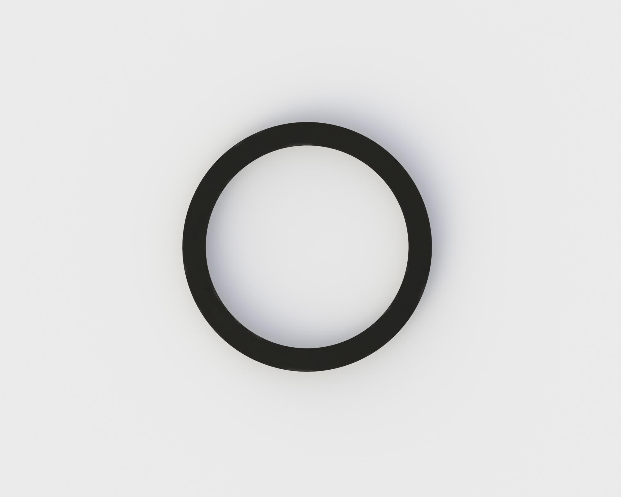 W&H O-Ring